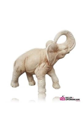 Słoń duży prezent z dedykacją